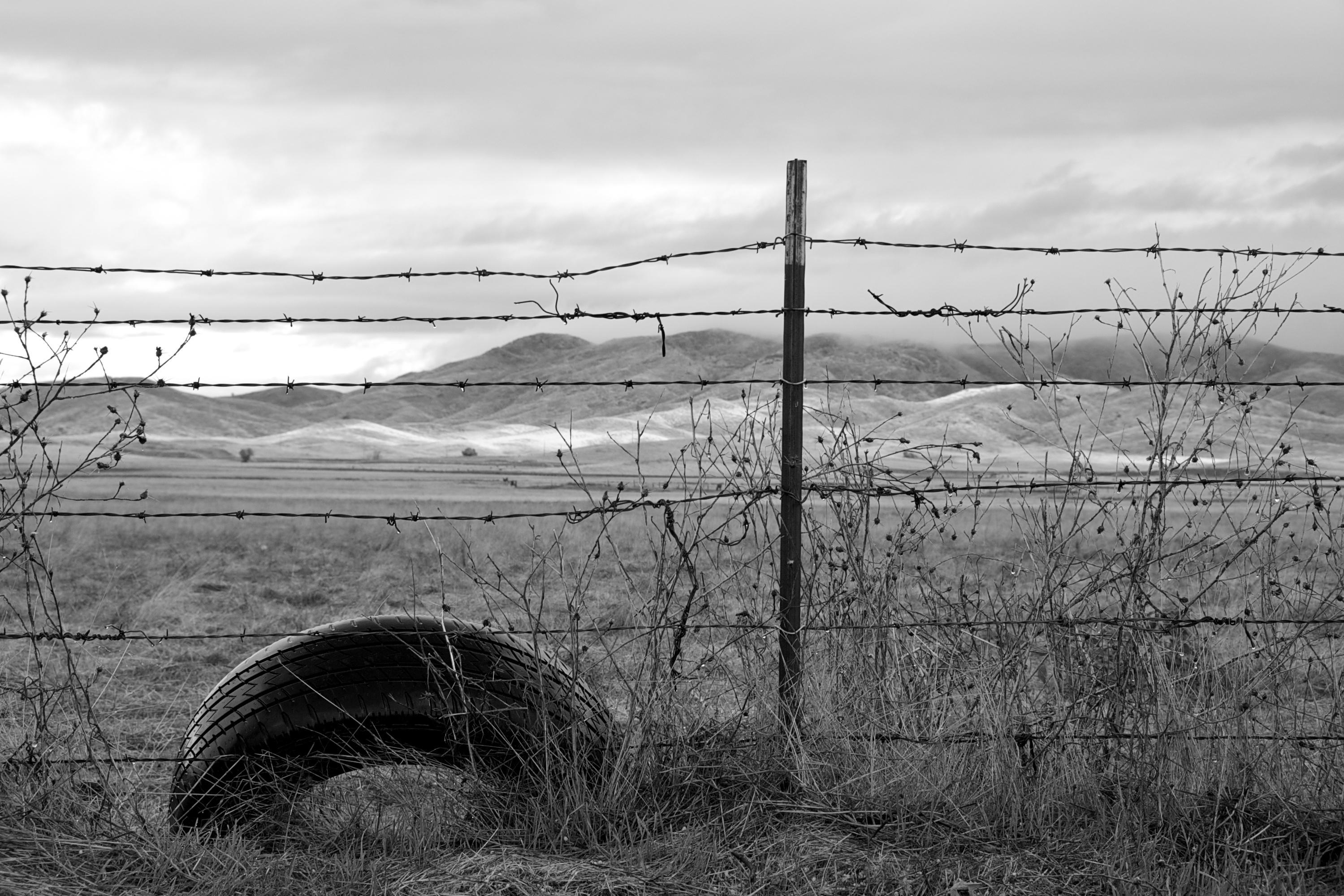 B/W Landscape